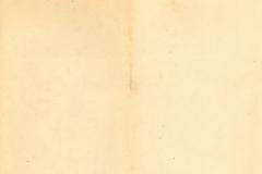 05_02.03.-V.503.b-11.03.Jkv_.-c-1918