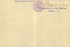 11_07.02.V.171.c-K.Gy_.9b-1918