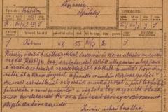18.-12.XVI_.1-388-08.03.a-1919
